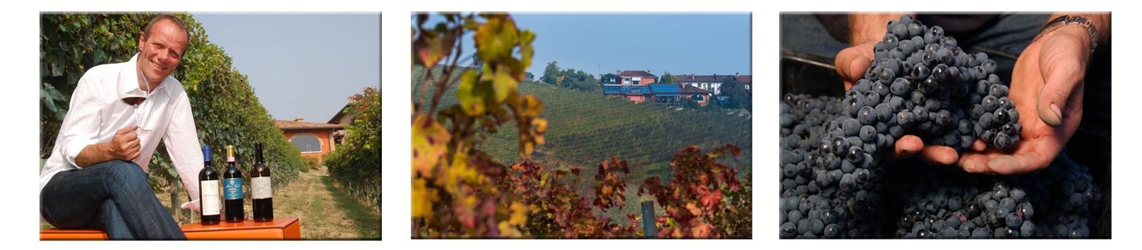 Weinmarkt_Winzer_VeglioMauro-1